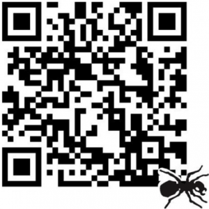 Tips to Effectively Use QR Codes