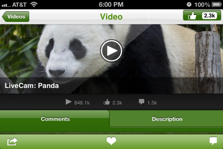 Live Animal Cams Increase User Engagement in Record Numbers in the San Diego Zoo App